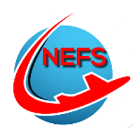 North East Flight Sim Group